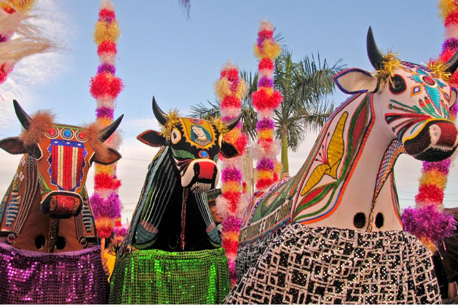 Bumba Meu Boi: Patrimônio Cultural Imaterial da Humanidade