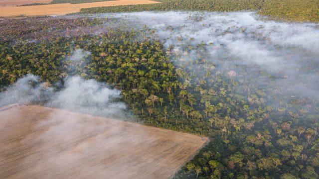 Invasão de terras Amazônia