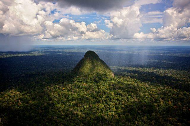 Amazônia estrada