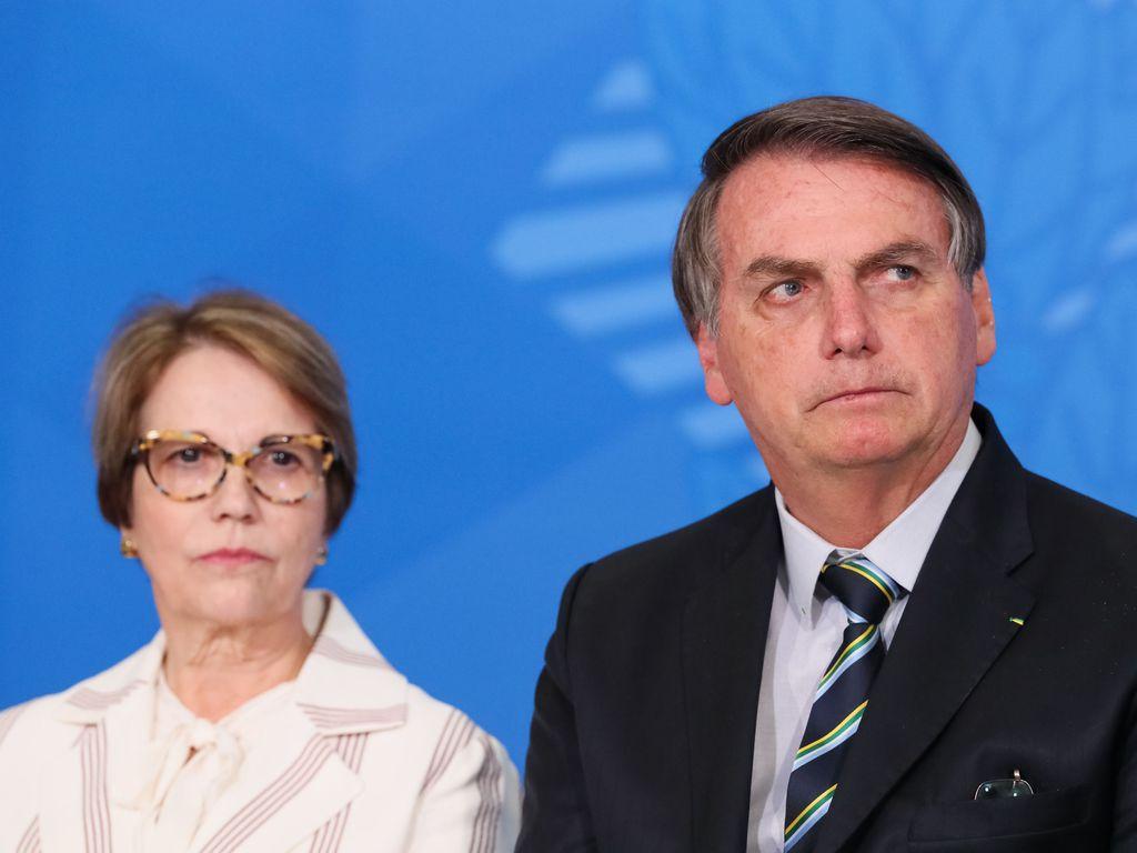 Aliados do Executivo passaram a sugerir que a ministra da Agricultura, Tereza Cristina, assuma o Ministério das Relações Exteriores