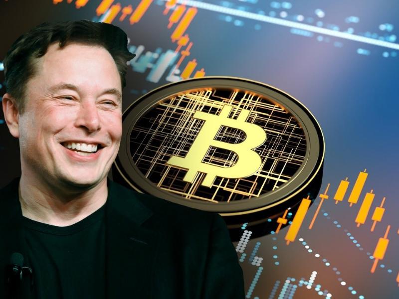 """Donald Trump a numit bitcoin """"o înșelătorie împotriva dolarului"""""""